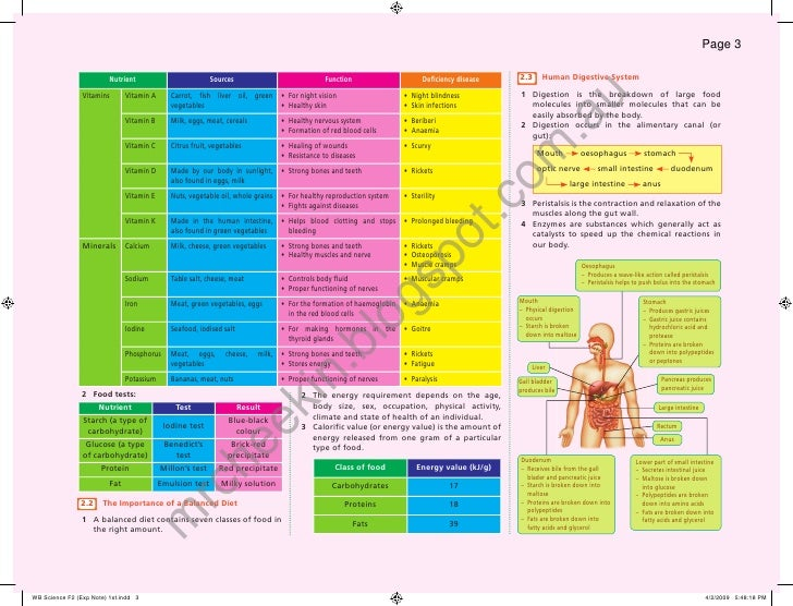 Page 3                           Nutrient                        Sources                              Function            ...