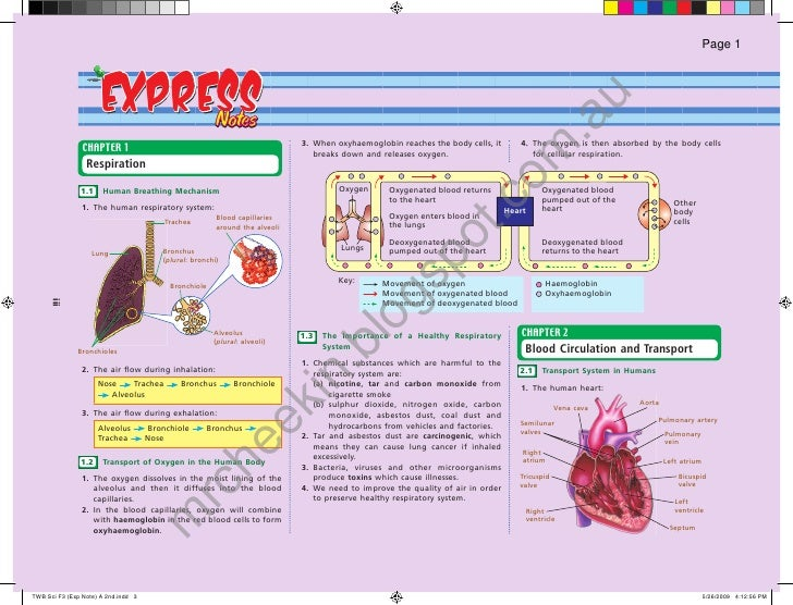 exam paper english form 2