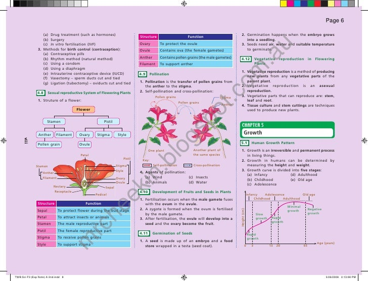 Science form 3 chapter 4 asexual reproduction in fungi