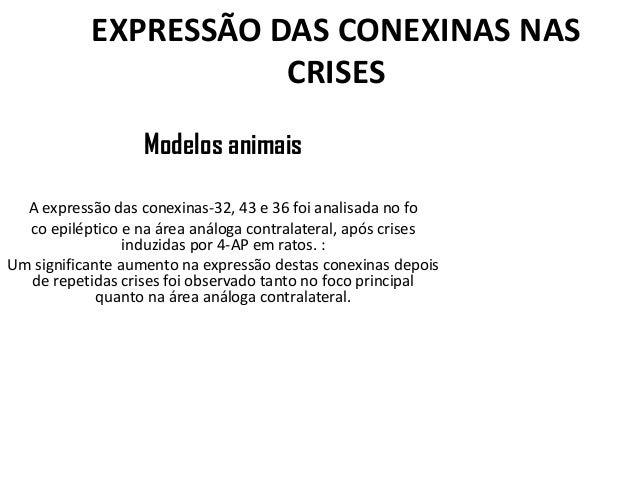 EXPRESSÃO DAS CONEXINAS NAS CRISES Modelos animais A expressão das conexinas-32, 43 e 36 foi analisada no fo co epiléptico...