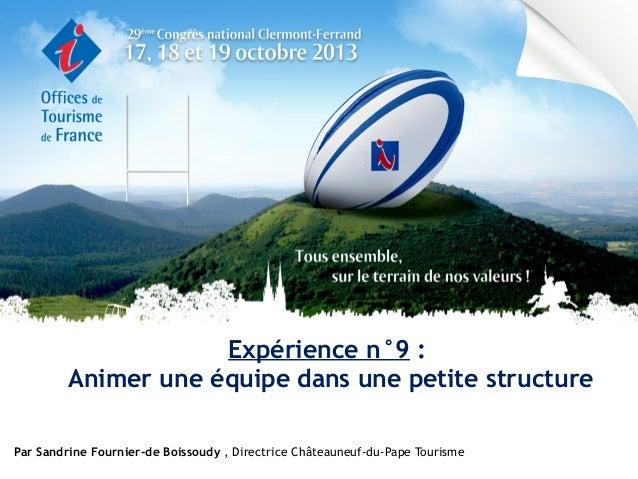 Expérience n°9 : Animer une équipe dans une petite structure Par Sandrine Fournier-de Boissoudy , Directrice Châteauneuf-d...