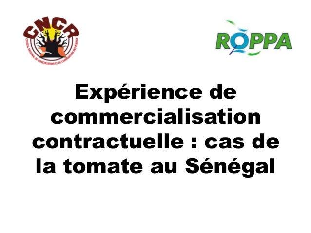 Expérience de commercialisation contractuelle : cas de la tomate au Sénégal