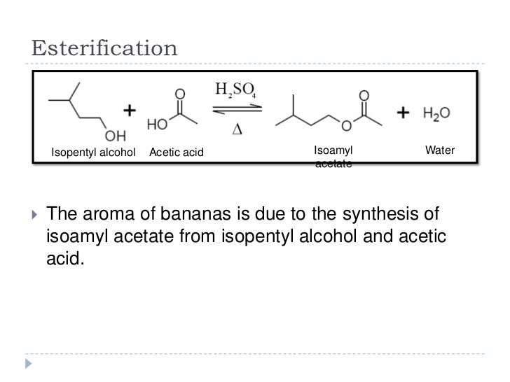 synthesis of isoamyl acetate This is a typical, though relatively simple, organic synthesis procedure  in the  propyl acetate and isoamyl acetate syntheses, the layers separate cleanly within .