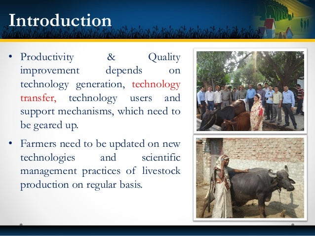 • Productivity & Quality improvement depends on technology generation, technology transfer, technology users and support m...