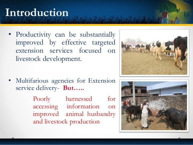 • Productivity can be substantially improved by effective targeted extension services focused on livestock development. • ...