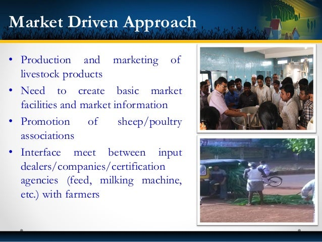 Interventions & Deliverables in NAIP Project • Community managed A. I. centers • A.I. service at village level • Fodder pr...