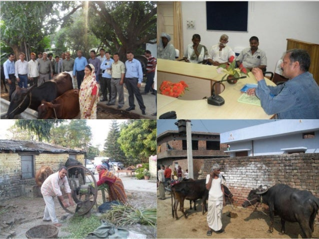 Extensionstrategy livestockextension india final