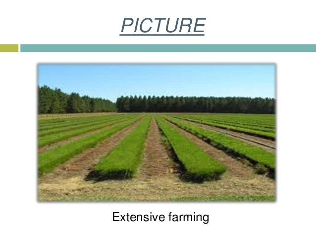advantages of subsistence farming pdf