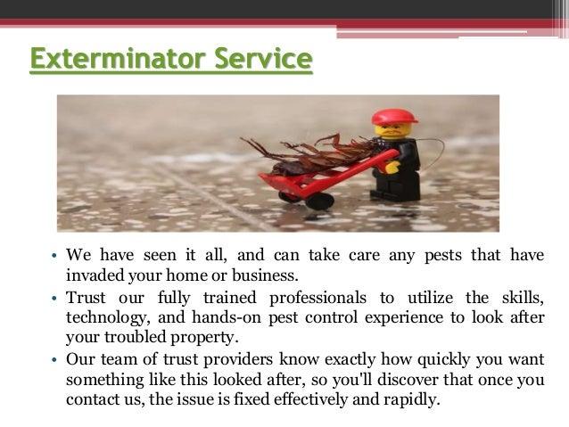 Termite Treatment Slide 3