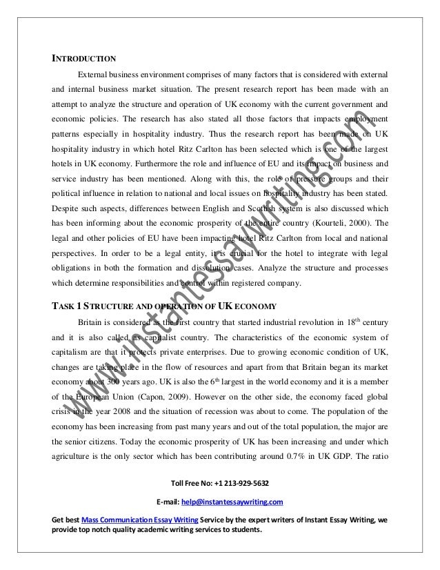 sample report on external business environment by instant essay writi  20 3