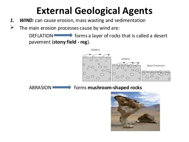 External Geological Agents 1. WIND: can cause erosion, mass wasting and sedimentation  The main erosion processes cause b...