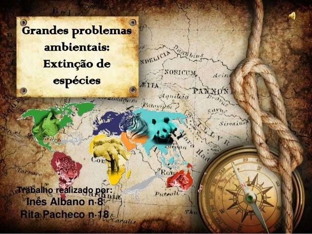 Grandes problemas ambientais: Extinção de espécies  Trabalho realizado por:  Inês Albano n·8 Rita Pacheco n·18