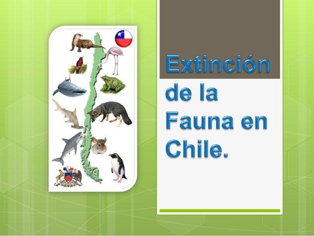  Una  especie amenazada es aquella que presenta problemas de conservación (amenazas) que significa riesgo de extinción en...