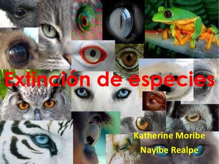 Extinción de especies  Katherine Moribe Nayibe Realpe