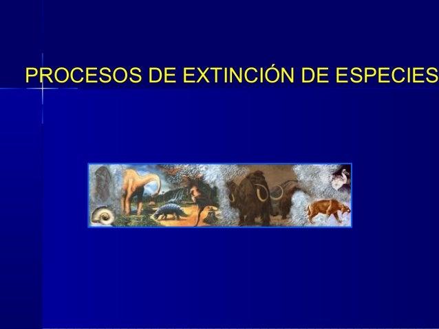 PROCESOS DE EXTINCIÓN DE ESPECIES