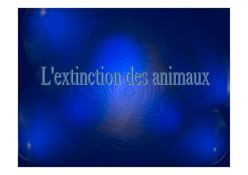 Un problème grave  Beaucoup d'espèces d'animaux  sont endanger  d'extinction. La nature a  toujours éliminé des espèces  e...