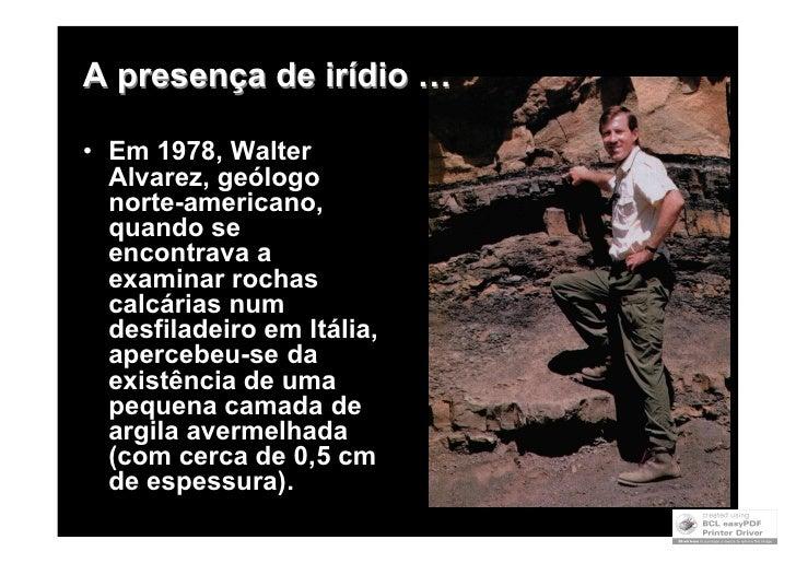Extinção dos Dinossáurios Slide 2