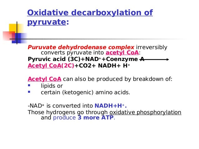 Oxaloacetic Acid Decarboxylation Lecturer