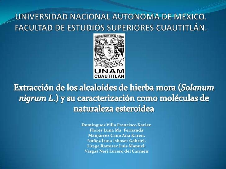UNIVERSIDAD NACIONAL AUTONOMA DE MEXICO.FACULTAD DE ESTUDIOS SUPERIORES CUAUTITLÁN.<br />Extracción de los alcaloides de h...