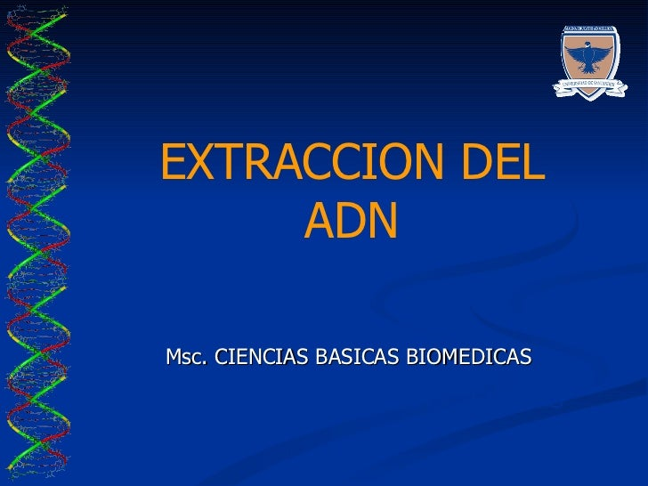 EXTRACCION DEL ADN Msc. CIENCIAS BASICAS BIOMEDICAS LABORATORIO DE BIOCIENCIAS