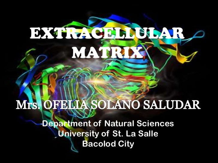 EXTRACELLULAR   MATRIX Department of Natural Sciences    University of St. La Salle         Bacolod City