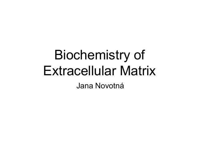 Biochemistry of  Extracellular Matrix  Jana Novotná