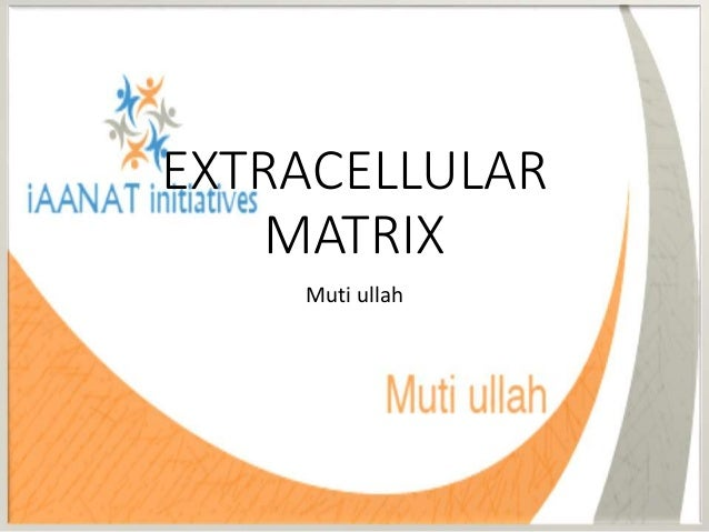 EXTRACELLULAR MATRIX Muti ullah