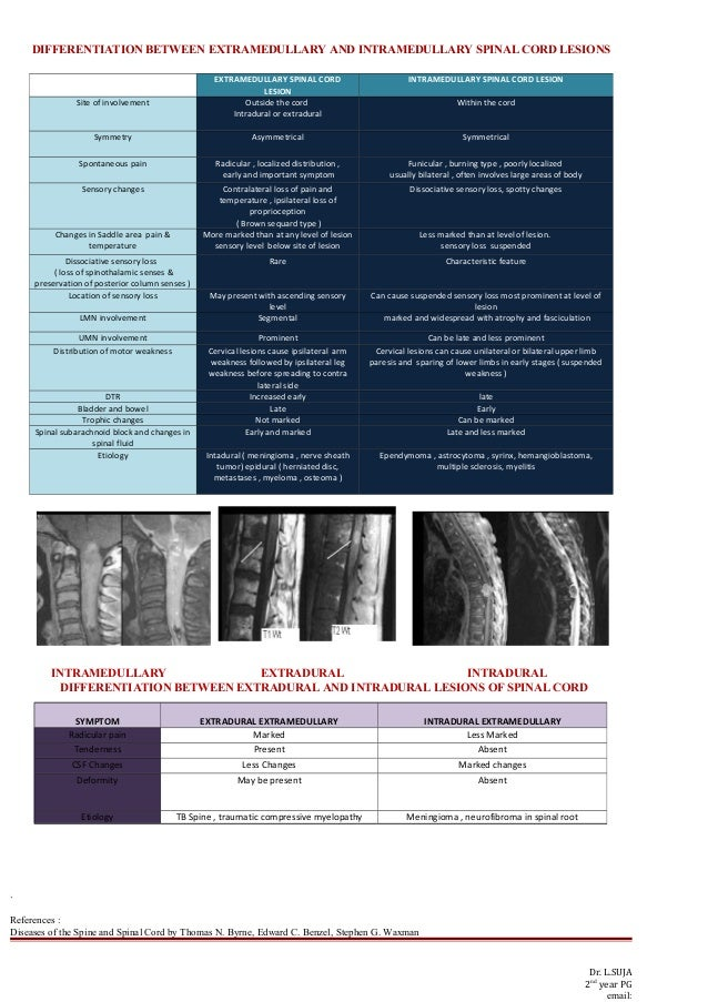 DIFFERENTIATION BETWEEN EXTRAMEDULLARY AND INTRAMEDULLARY SPINAL CORD LESIONS INTRAMEDULLARY EXTRADURAL INTRADURAL DIFFERE...
