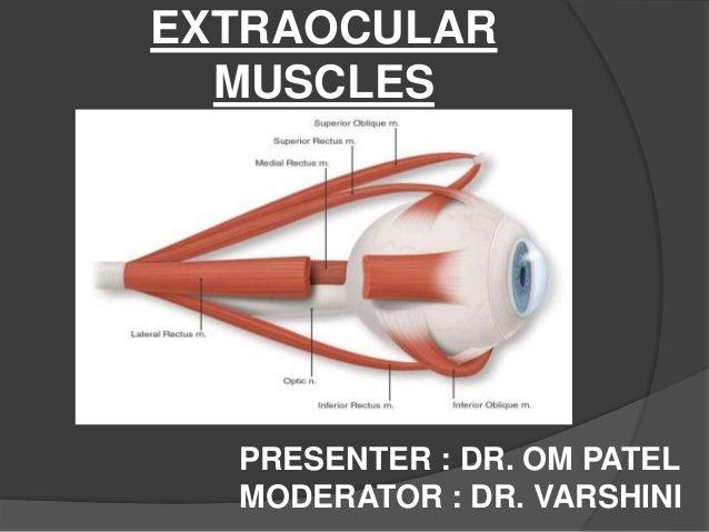 EXTRAOCULAR  MUSCLES  PRESENTER : DR. OM PATEL  MODERATOR : DR. VARSHINI