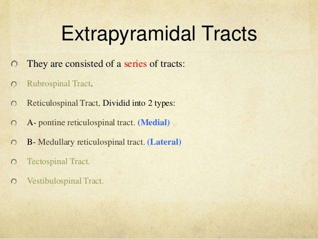 extrapyramidal tract