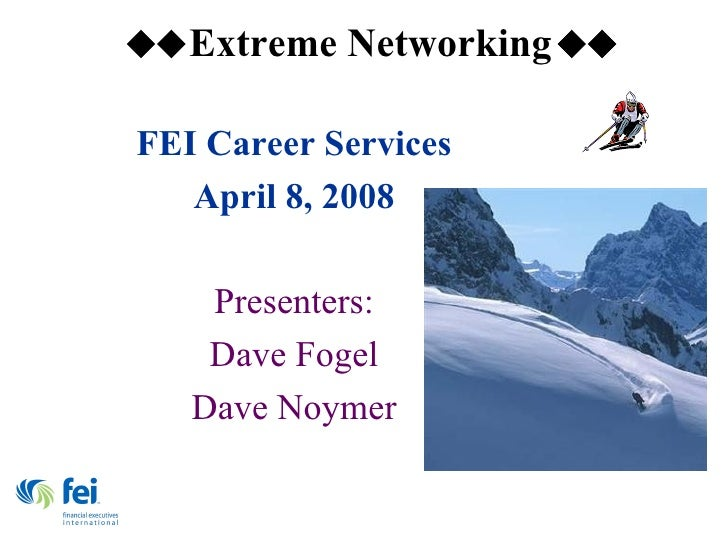 FEI Career Services April 8, 2008 Presenters: Dave Fogel Dave Noymer
