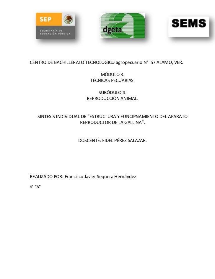CENTRO DE BACHILLERATO TECNOLOGICO agropecuario N° 57 ALAMO, VER.                               MÓDULO 3:                 ...