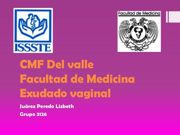 CMF Del valleFacultad de Medicina Exudado vaginal<br />Juárez Peredo Lizbeth<br />Grupo 3126<br />