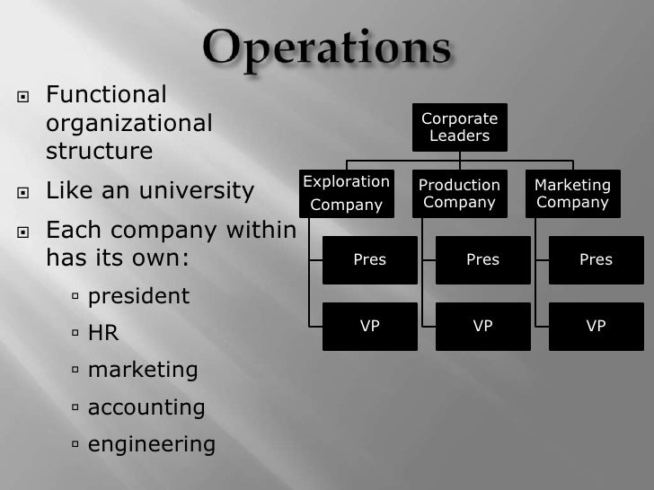 define functional organizations and product organization