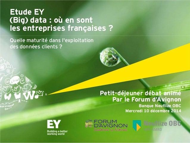 Petit-déjeuner débat animé  Par le Forum d'Avignon  Banque Neuflize OBC  Mercredi 10 décembre 2014  Etude EY  (Big) data :...