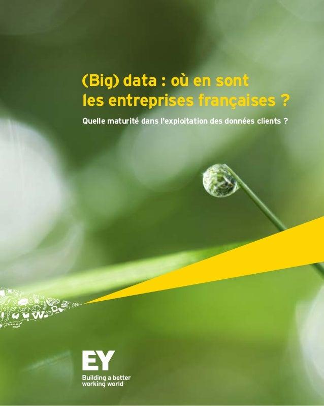(Big) data : où en sont  les entreprises françaises ?  Quelle maturité dans l'exploitation des données clients ?