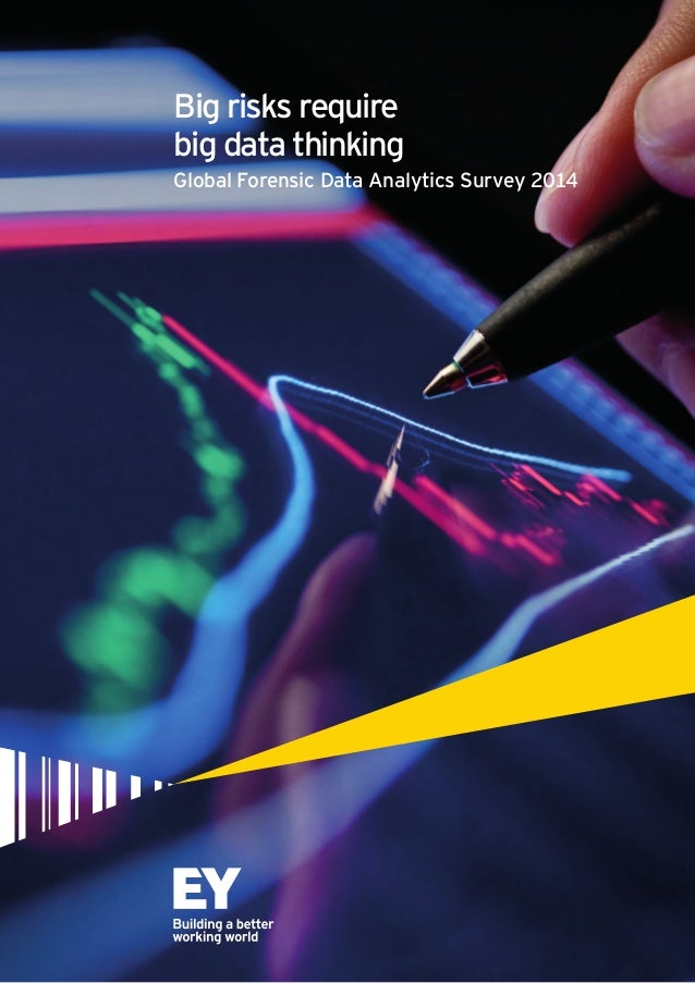 Big risks require  big data thinking  Global Forensic Data Analytics Survey 2014