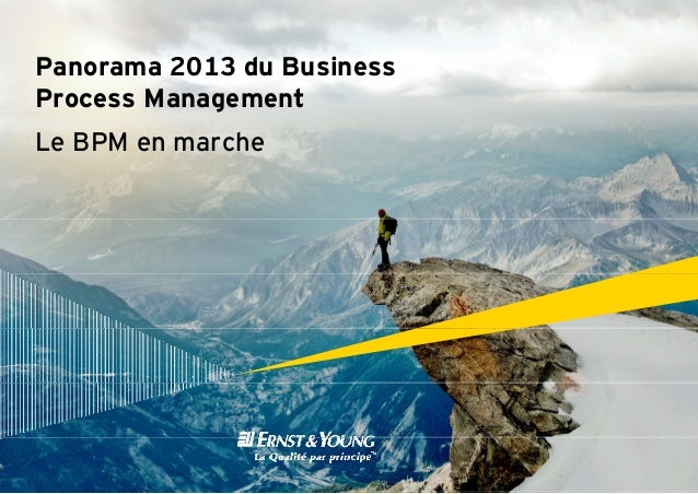 Panorama 2013 du Busin ness Process Management g Le BPM en marche