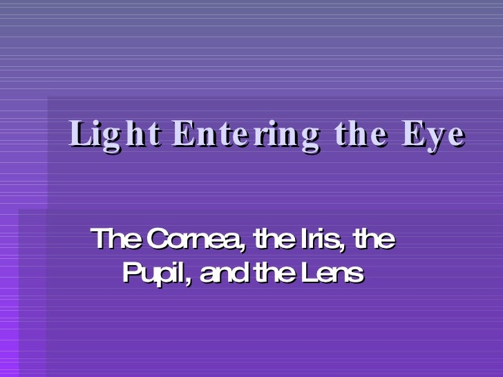 Light Entering the Eye The Cornea, the Iris, the Pupil, and the Lens