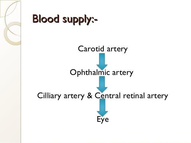 Blood supply:-Blood supply:- Carotid artery Ophthalmic artery Cilliary artery & Central retinal artery Eye