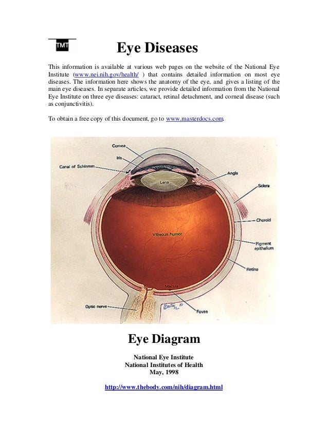Eye DiseasesThis information is available at various web pages on the website of the National EyeInstitute (www.nei.nih.go...
