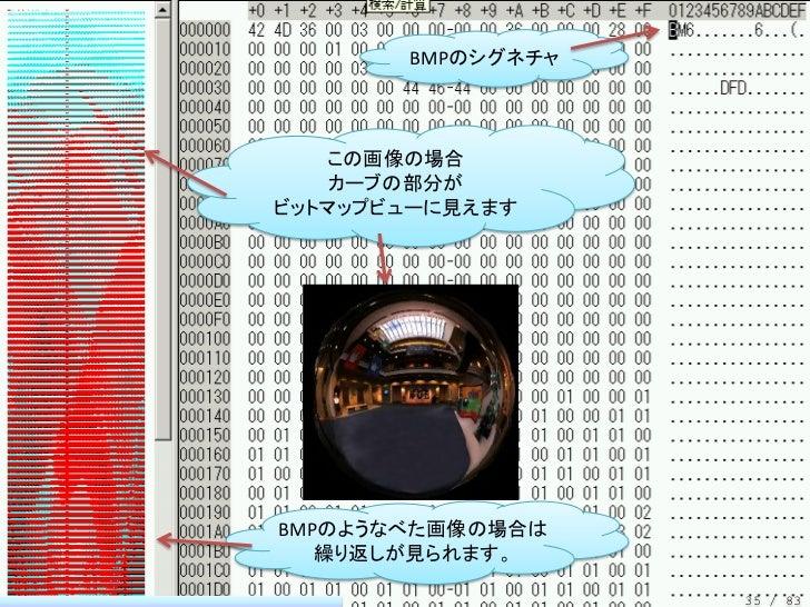 BMPのシグネチャ   この画像の場合    カーブの部分がビットマップビューに見えますBMPのようなべた画像の場合は   繰り返しが見られます。                   35 / 83