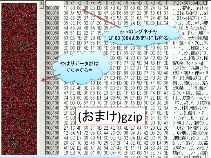 gzipのシグネチャ           1F 8B (08)はあまりにも有名やはりデータ部は ぐちゃぐちゃ   (おまけ)gzip                                48 / 83