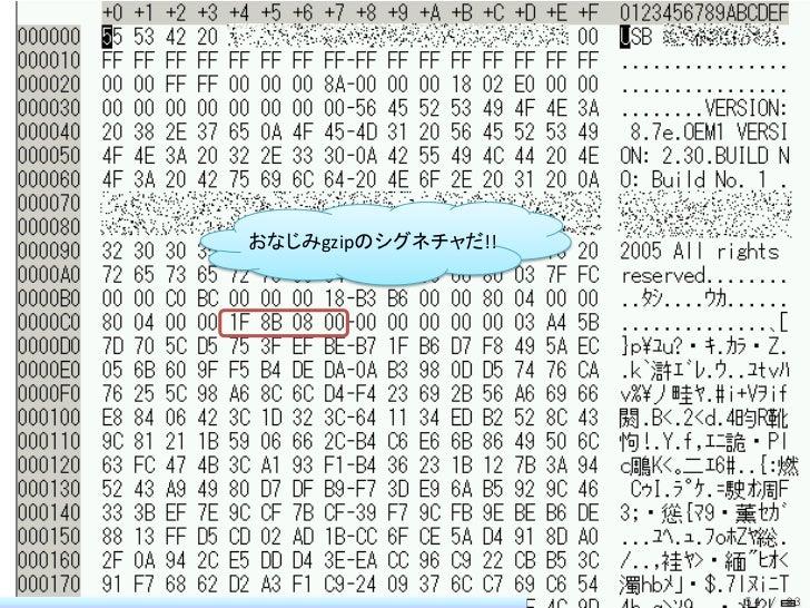 おなじみgzipのシグネチャだ!!                    54 / 83