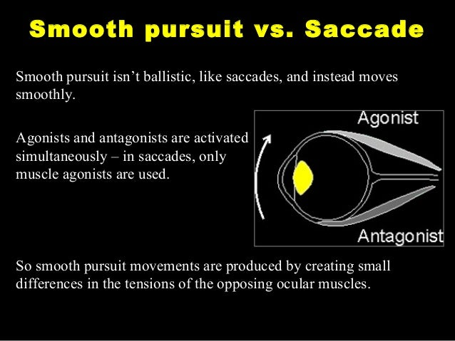 smooth pursuit eye movements essay Conjugate eye movements are those that preserve the angular relationship  between  saccades or saccadic eye movements are very fast jumps from one  eye.