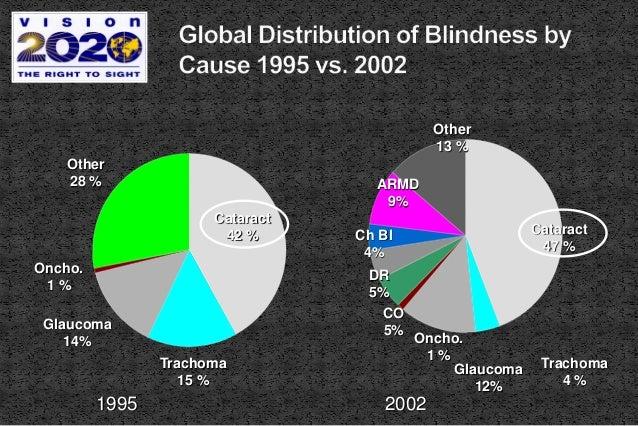Cataract 42 % Trachoma 15 % Glaucoma 14% Oncho. 1 % Other 28 % Cataract 47 % Trachoma 4 % Glaucoma 12% Oncho. 1 % Other 13...