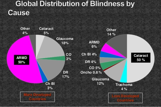 Cataract 5% Glaucoma 18% Other 4% ARMD 50% Ch Bl 3% DR 17% CO 3% Cataract 50 % Trachoma 4 % Glaucoma 12% Oncho 0.8 % Other...