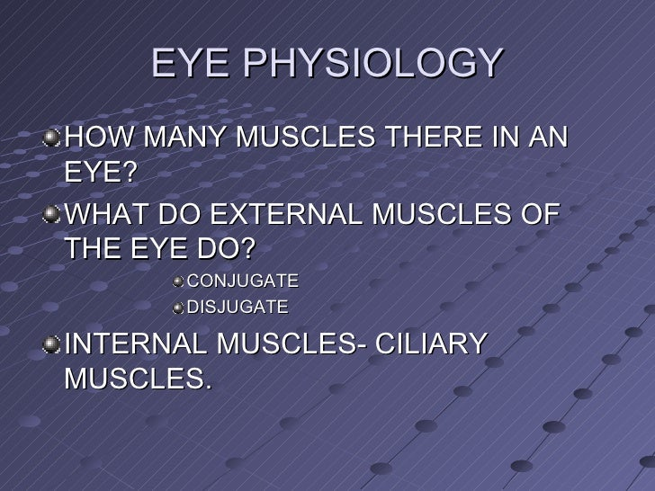 EYE PHYSIOLOGY <ul><li>HOW MANY MUSCLES THERE IN AN EYE? </li></ul><ul><li>WHAT DO EXTERNAL MUSCLES OF THE EYE DO? </li></...