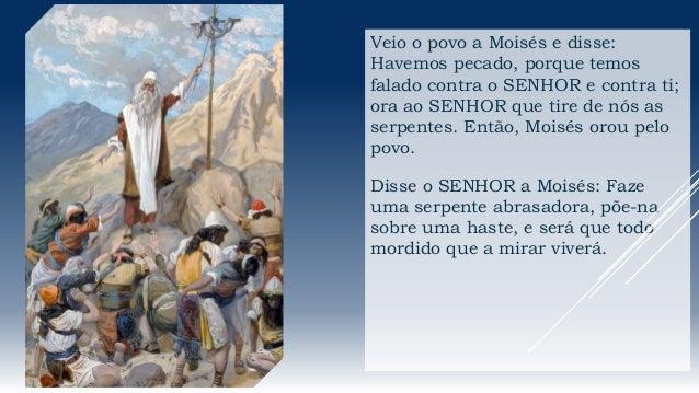 Veio o povo a Moisés e disse: Havemos pecado, porque temos falado contra o SENHOR e contra ti; ora ao SENHOR que tire de n...