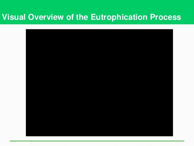 What is Eutrophication? What are the stages of Eutrophication?